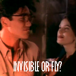 Invisible or Fly?
